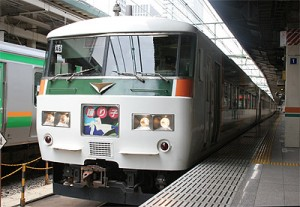Odoriko is serviced by 185 series. (C) Sonic Rail Garden