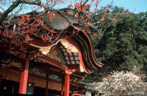 Dazaifu Tenmangu Shrine is one of the most important Tenmangu Shrine in Japan.  ©Fukuoka Prefecture/© JNTO